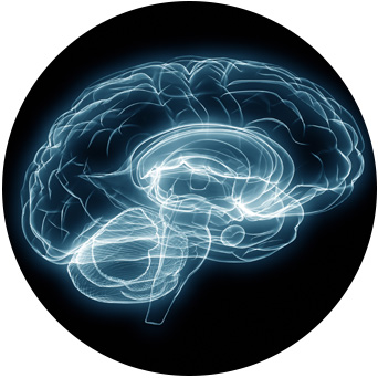 bg-frame-neurologia